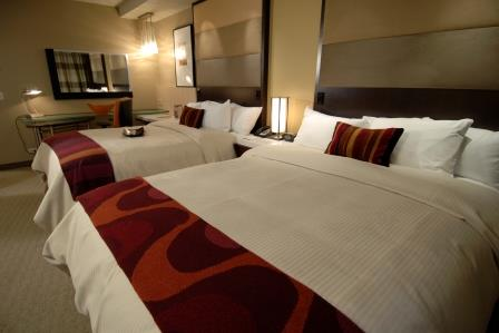 Contemporary Resort Guest Room