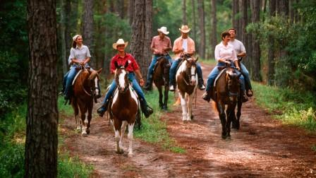 Fort Wilderness Trailrides