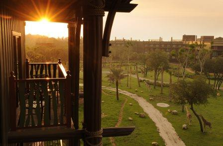 Disney 39 s animal kingdom villas kidani village and jambo for View from balcony quotes