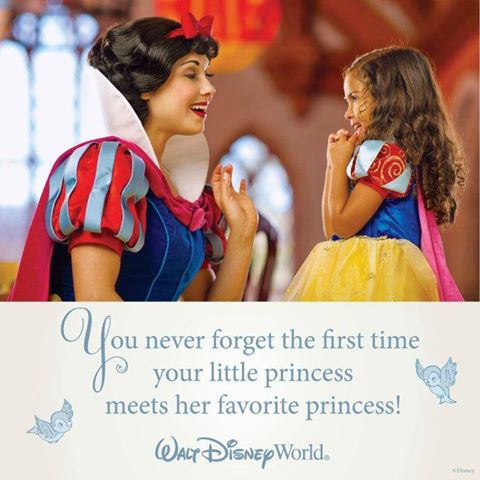Intro To Disney Special Offer Moments Of Magic Travel